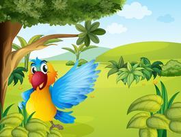 Um papagaio colorido na floresta vetor