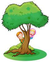 Duas meninas, escondendo, em, a, árvore vetor