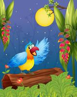 Um papagaio colorido no meio da mata vetor