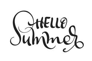 Olá texto de verão isolado no fundo branco. caligrafia e letras vetor