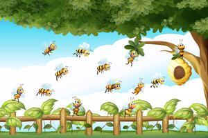 Cena, com, abelhas, voando, ao redor, colmeia vetor