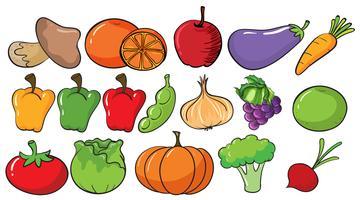 Diferentes tipos de frutas e legumes vetor