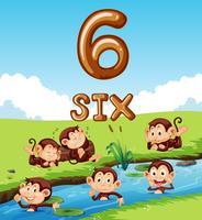 Seis macacos ao lado do rio