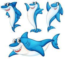 Série de tubarão vetor