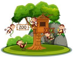 Macaco na casa da árvore no zoológico vetor