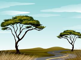 Estrada, através, savanna, campo vetor