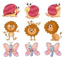Um leão, um caracol e uma borboleta vetor