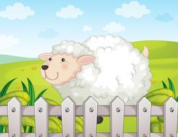 Uma ovelha sorridente vetor