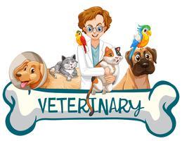 Uma bandeira da clínica veterinária vetor