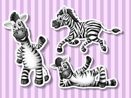 zebras vetor