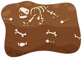 Fóssil sob o solo vetor