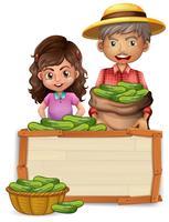 Agricultor, segurando, pepino, ligado, tábua madeira vetor