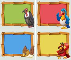 Design de moldura e aves selvagens