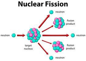 Diagrama mostrando a fissão nuclear vetor