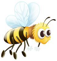 Uma abelha vetor