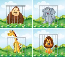 Animais selvagens em gaiola vetor