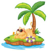 Gato na ilha de verão vetor