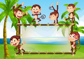 Macaco vetor