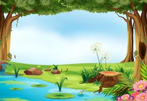 Lagoa vetor