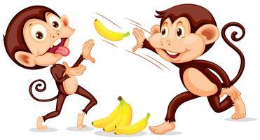 Macaco jogando uma banana vetor