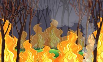 Um desastre de fogo selvagem de floresta vetor