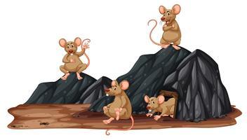 Um rato em um buraco vetor