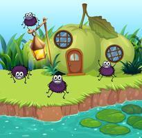 Aranhas que vivem em casa de goiaba vetor