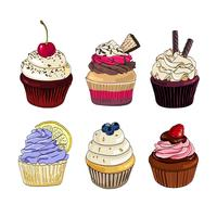 Conjunto de cupcakes em um fundo branco. vetor