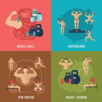 Conjunto plano de musculação
