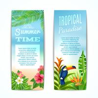 Banner de verão tropical vetor