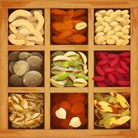 Coleção Nuts Assorted vetor