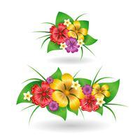 Elementos de decoração de flores tropicais vetor