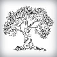 Mão desenhada árvore símbolo vetor