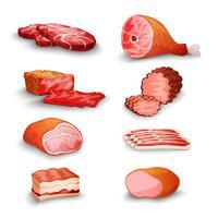 Conjunto de carne fresca vetor