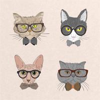 Coleção de gatos hipster vetor