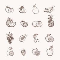 Conjunto de ícones de frutas vetor