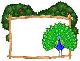 Modelo de quadro com pavão no mato vetor