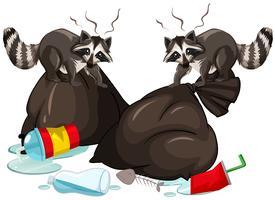 Dois guaxinins procurando lixo vetor