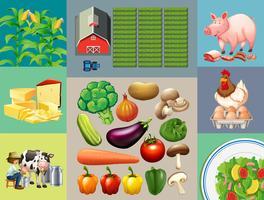 Diferentes tipos de produtos alimentares na fazenda vetor