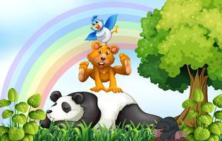 Animais e selva vetor