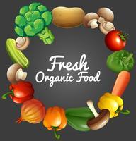 Design de cartaz com legumes orgânicos vetor