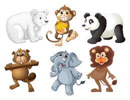 Animais na floresta vetor