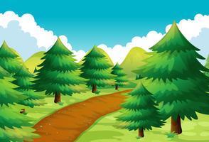 Cena da natureza com pista e pinheiros vetor