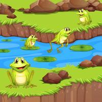 Flogs que vivem na lagoa do rio vetor