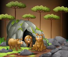 Três, ursos, vivendo, em, a, caverna