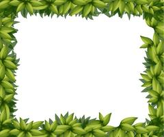 Borda feita de folhas