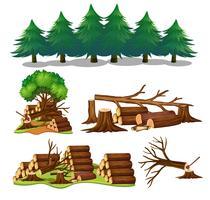 Um conjunto de elemento de madeira vetor