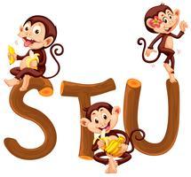 Macaco e alfabeto de madeira vetor