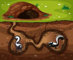 Skunk vivendo no buraco vetor