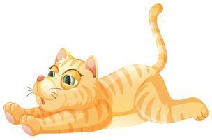 Um gato preguiçoso no fundo whiye vetor